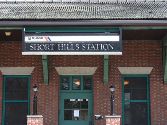 6 Meadowbrook Rd, Short Hills, NJ 07078