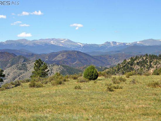 54 Guardian Peak Dr, Livermore, CO 80536