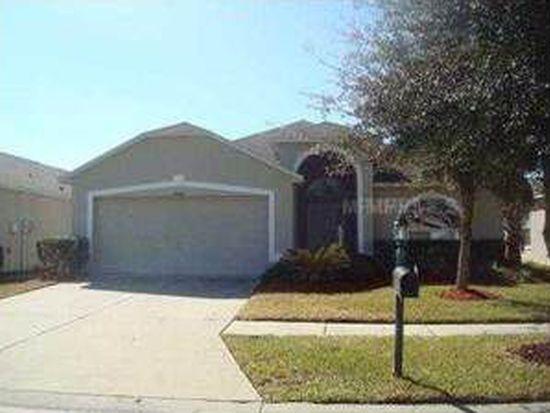 10467 Lucaya Dr, Tampa, FL 33647