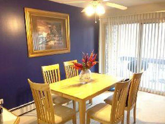 430 Home Ave APT 102S, Oak Park, IL 60302