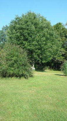 5077 Lutz Rd, Guilford, IN 47022
