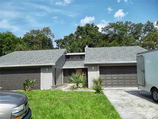 10801 Sassafras St, Tampa, FL 33617