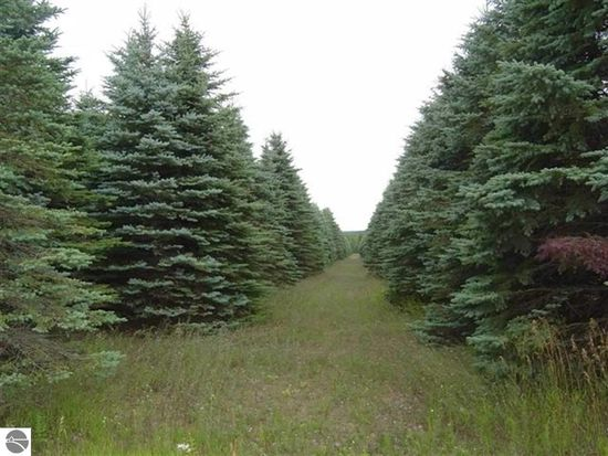 Lot # 3 Gallagher Rd, Thompsonville, MI 49683