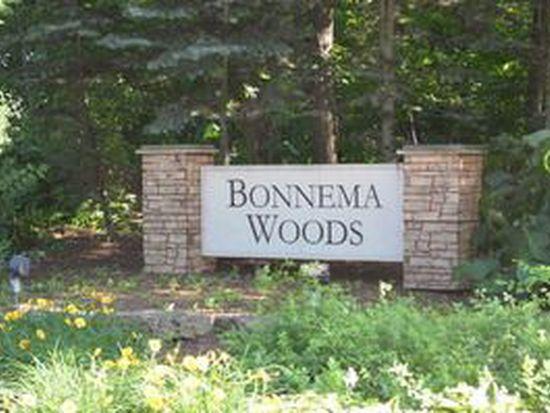 1408 Bonnema Ct, Naperville, IL 60565