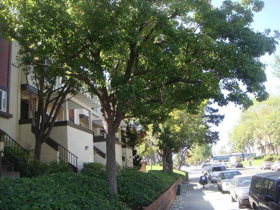 7204 Clarendon St, San Jose, CA 95129