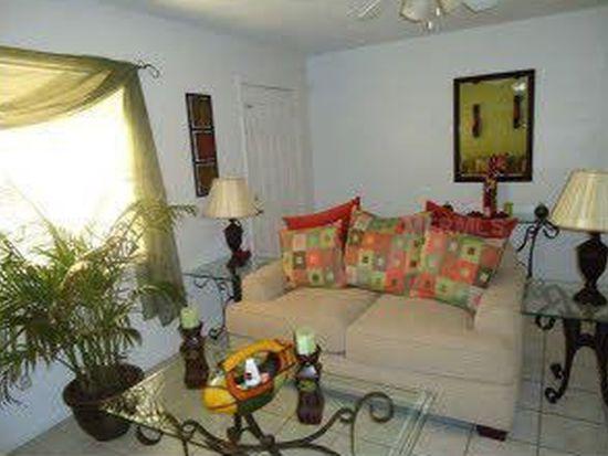 8506 Lee Pl, Tampa, FL 33619