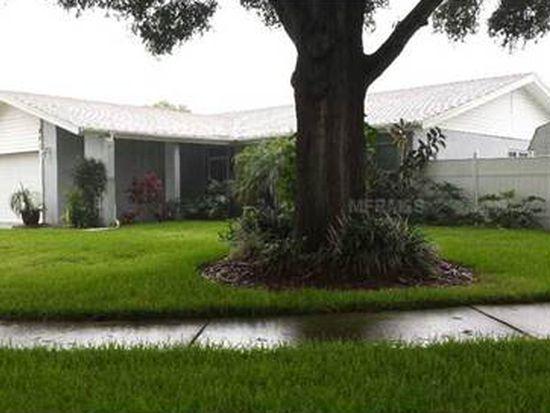 828 Ambassador Loop, Tampa, FL 33613