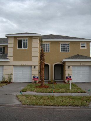 20463 Berrywood Ln, Tampa, FL 33647