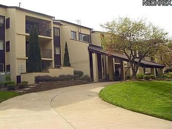 1006 Bunker Dr APT 202, Fairlawn, OH 44333