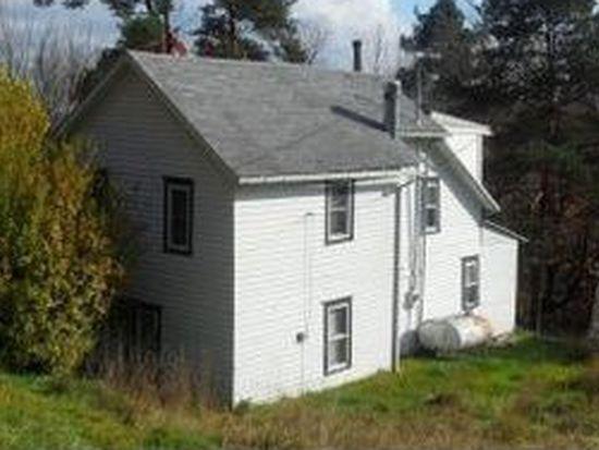 238 Grippen Hill Rd, Vestal, NY 13850