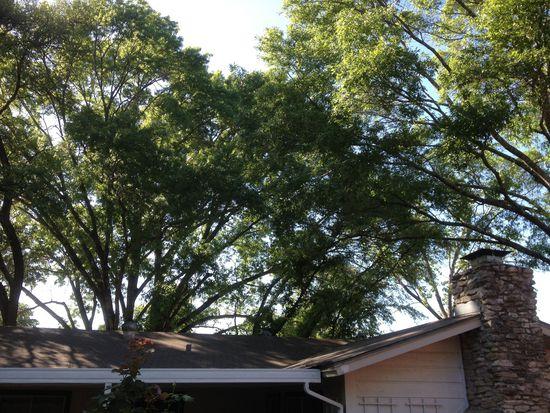 8517 Shenandoah Dr, Austin, TX 78753