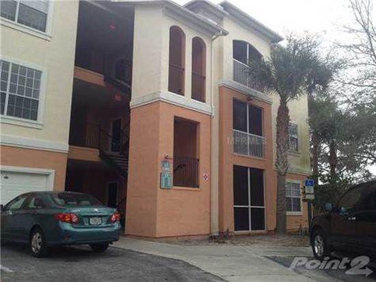13003 Sanctuary Cove Dr UNIT 203, Temple Terrace, FL 33637