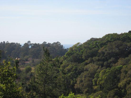 88 Robak Dr, La Selva Bch, CA 95076