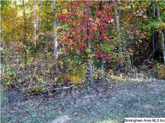1028 Long Leaf Lake Dr, Helena, AL 35022