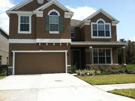 19313 Water Maple Dr, Tampa, FL 33647