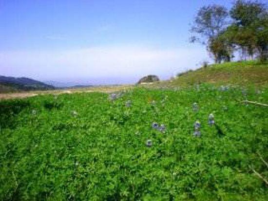 8375 Vista Monterra, Monterey, CA 93940