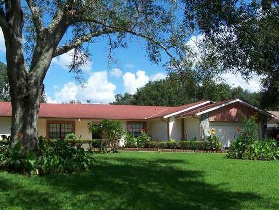 407 Dennison Rd, Lutz, FL 33548