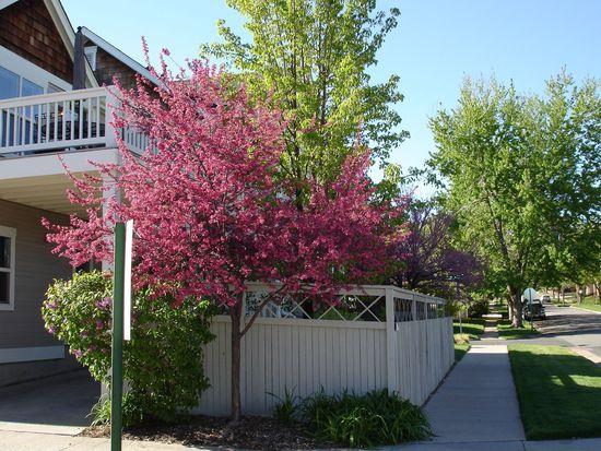 4799 W 36th Ave, Denver, CO 80212