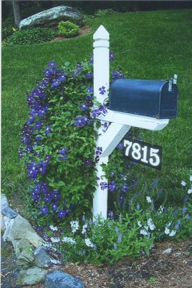 7815 Surreywood Dr, North Chesterfield, VA 23235