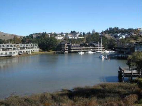 38 Greenwood Bay Dr, Tiburon, CA 94920