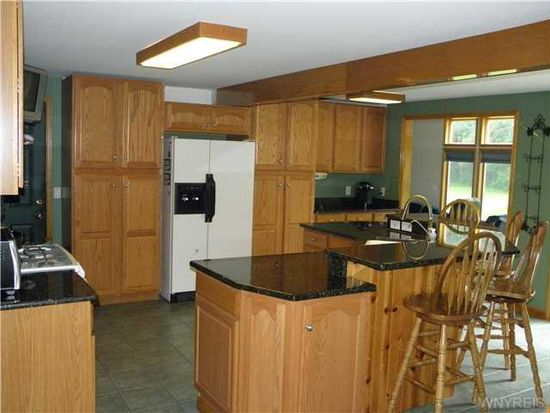 8073 Hayes Hollow Rd, Colden, NY 14033