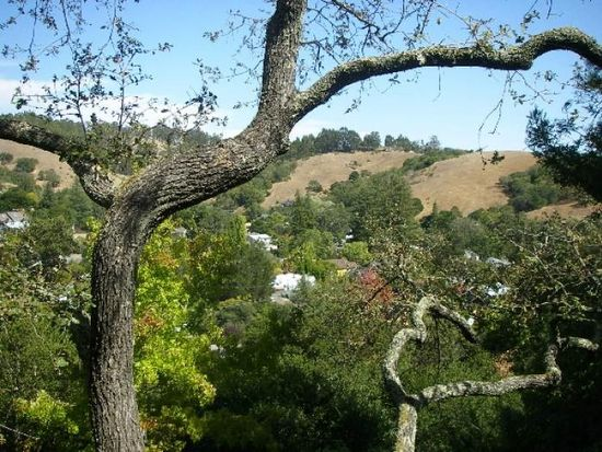 68 Oakland Ave, San Anselmo, CA 94960