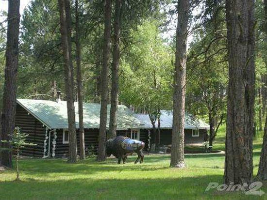 12509 Hazelrodt Cutoff, Custer, SD 57730