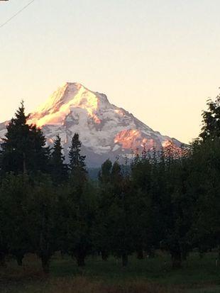 5785 Trout Creek Ridge Rd, Mount Hood Parkdale, OR 97041