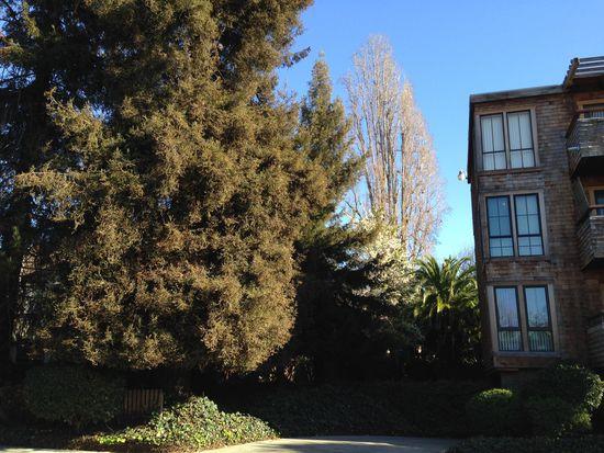 742 Wesley Way APT 3B, Oakland, CA 94610