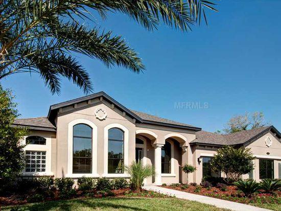 17805 Saint Lucia Isle Dr, Tampa, FL 33647