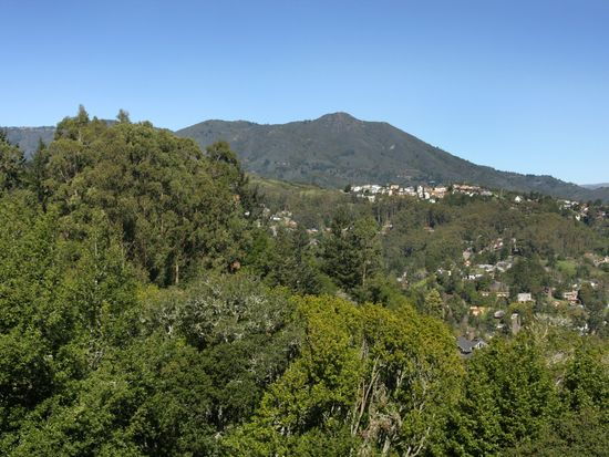 410 County View Dr, Mill Valley, CA 94941