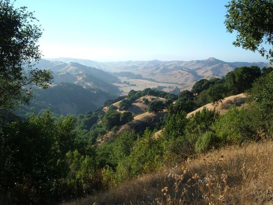 1190 Bear Creek Rd, Briones, CA 94553