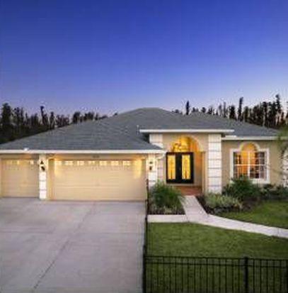 30134 Five Farms Ave, Wesley Chapel, FL 33543