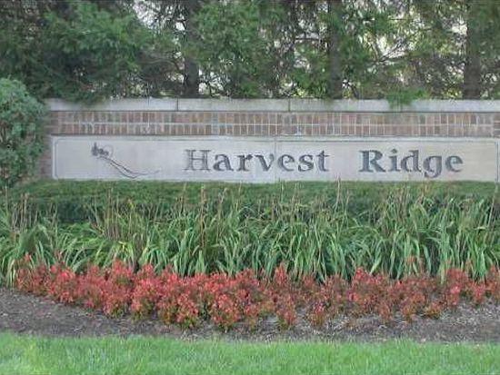 590 Raintree Dr, Avon, IN 46123
