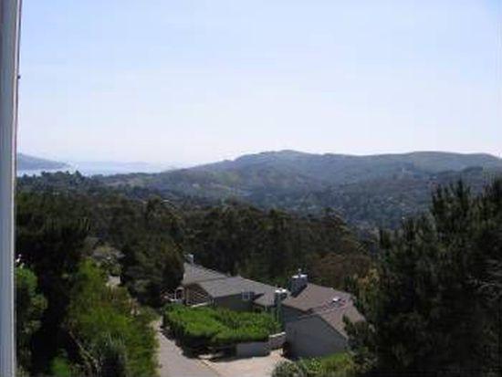 111 Skyline Ter, Mill Valley, CA 94941