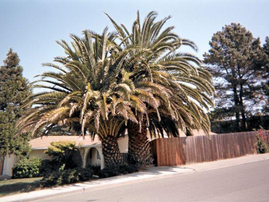 1882 Lindo St, Benicia, CA 94510