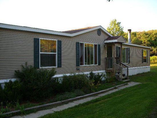 85 Meadow Ln, Davenport, NY 13750