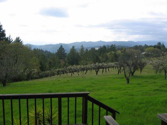 24655 Loma Prieta Ave, Los Gatos, CA 95033