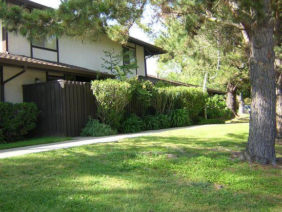 111 Castillion Ter, Santa Cruz, CA 95060