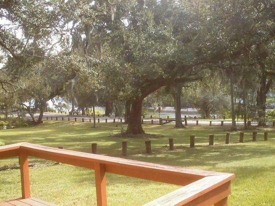 8116 N River Shore Dr, Tampa, FL 33604