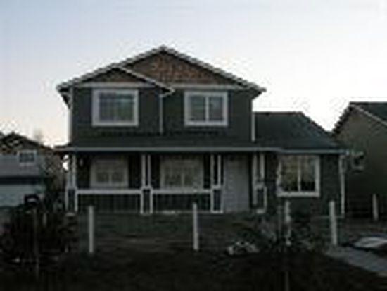 4507 Steves Aly, Mount Vernon, WA 98274