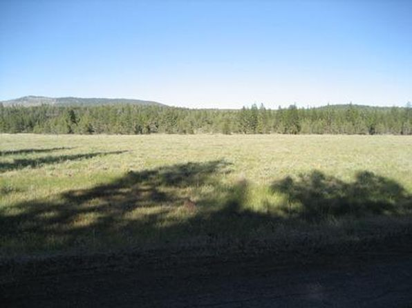 null bed null bath Vacant Land at 000 Little Valley Rd Little Valley, CA, 96056 is for sale at 90k - 1 of 5