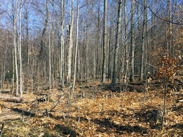 null bed null bath Vacant Land at  5 Bend Lane Tupper Lake, NY, 12986 is for sale at 55k - google static map