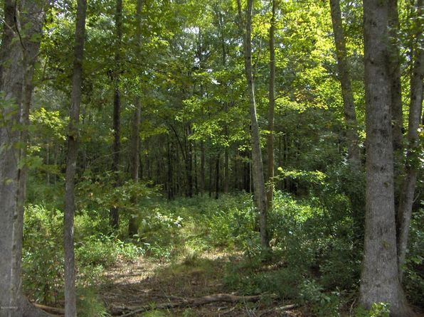 null bed null bath Vacant Land at 34 Booker T Washington Cir Yemassee, SC, 29945 is for sale at 20k - google static map