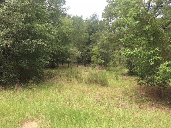 null bed null bath Vacant Land at 8480 SW 209th Court Rd Dunnellon, FL, 34431 is for sale at 15k - 1 of 5