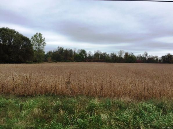 3 bed 1 bath Vacant Land at  V/L -10926 Miland Rd Clarence, NY, 14032 is for sale at 65k - 1 of 4