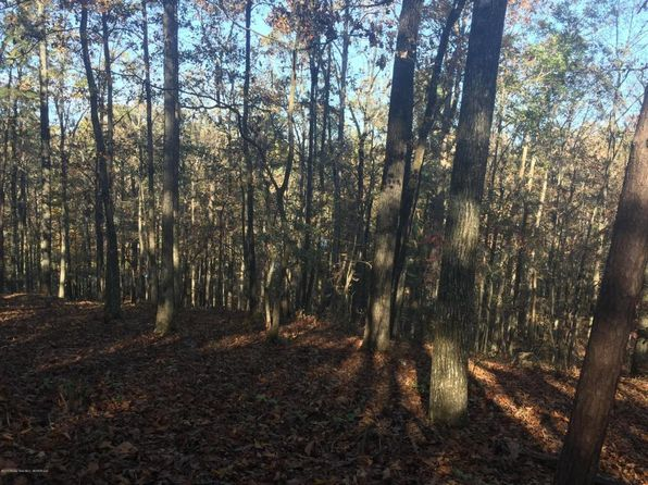 null bed null bath Vacant Land at  Lays Dr Jasper, AL, 35503 is for sale at 24k - 1 of 3