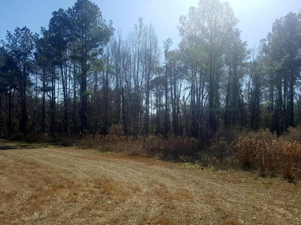 null bed null bath Vacant Land at 0 Fl 100 Lake Butler, FL, 32054 is for sale at 48k - 1 of 12