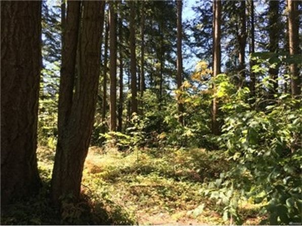 null bed null bath Vacant Land at 17339 SE EAST VIEW LN YELM, WA, 98597 is for sale at 35k - google static map