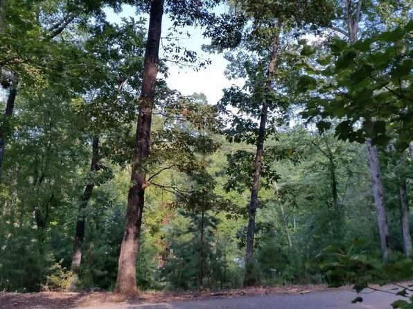 null bed null bath Vacant Land at 26 Rooks Mineral Bluff, GA, 30559 is for sale at 30k - 1 of 9